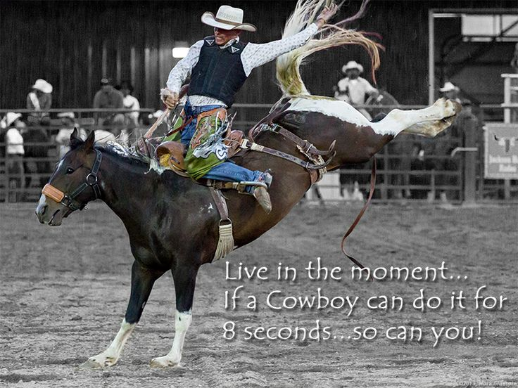LIve life in the present...just like the cowboys do...: Living Life, Live Life