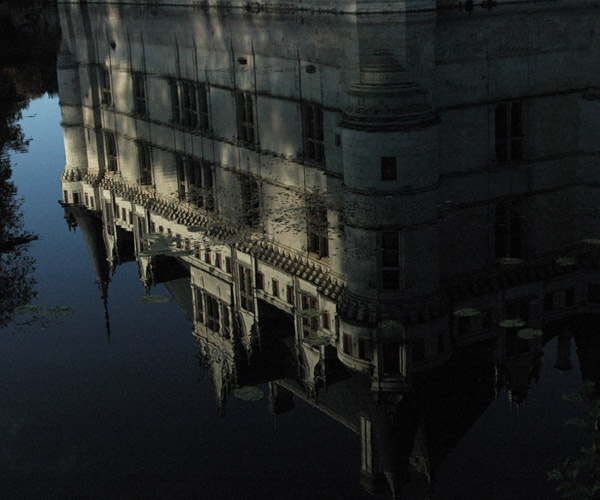 En el Fondo del Mar.... Deep Down in the Sea... By Angela Terlera ©