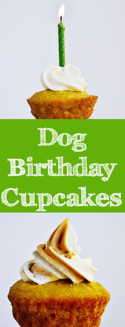This dog cupcake recipe from our new book, The Healthy Hound Cookbook, also appears in Woman's Day magazine this month! #DogBirthday