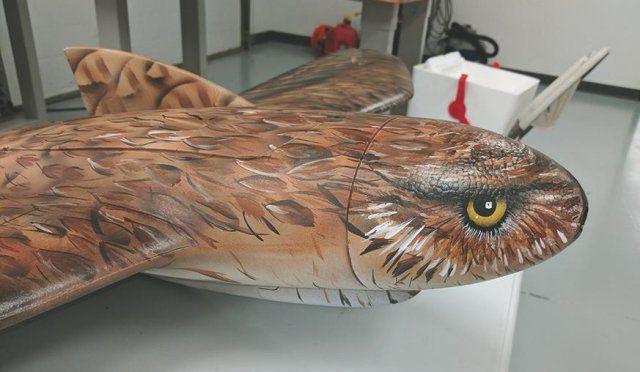 Disguised Drones Boost Wildlife Management - UAS VISION https://link.crwd.fr/2iuv
