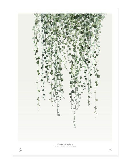 If you can't keep plants alive long enough to keep up with the 1970s trend of foliage, try adding the green element with some wall art. We love this string of pearls print, which would look great in a white or beech wood frame in any room.