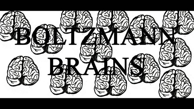 The Boltzmann Brain Paradox