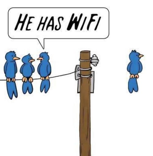 humour, internet, informatique