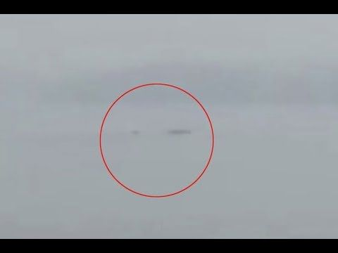 Watch: Odd 'Sea Creature' Spotted in China | Coast to Coast AM