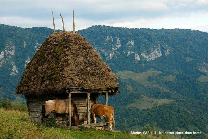 Apuseni Mountains, Transylvania, Romania