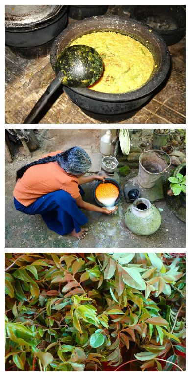 35 best images about authentic sri lankan food and recipes for Authentic sri lankan cuisine