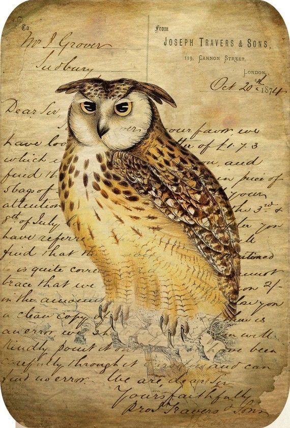 Owl Tags Antiqued Vintage Images Printable by DigitalAntiques, $3.50