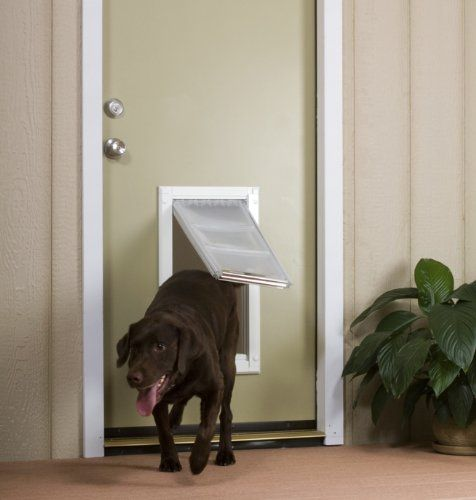 Dog Door Reviews : If Youu0027ve Never Owned A Pet Door Before, You