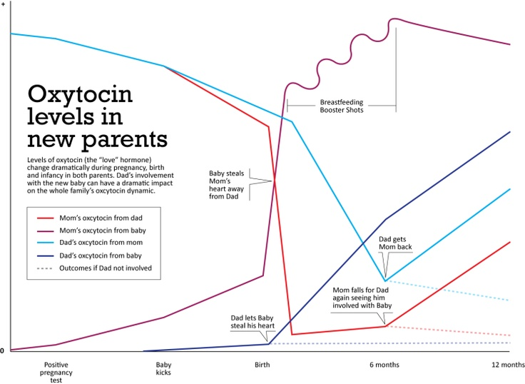 Oxytocin Levels In New Parents