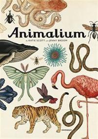 Välkommen till museet som är öppet varje dag, året om! Den här stora, fantastiska djurfaktaboken har gjort dundersuccé i en rad länder, och nu är det Sveriges tur att få njuta av ett utsökt bildmaterial och spännande fakta baserade på senaste rön. I boken presenteras fler än 160 djurarter, alla detaljrikt avbildade och framställda precis som i ett riktigt gammaldags museum. Utställningen passar både vuxna och barn och är dessutom en skönhetsupplevelse! Vi vandrar genom salarna, kikar i…