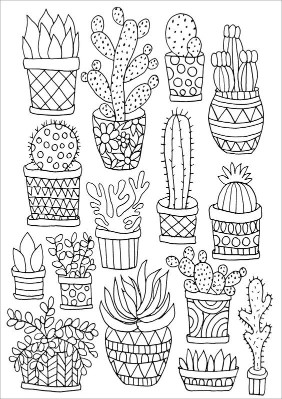 1161 best adult colouring flowers images on pinterest for Cactus coloring page