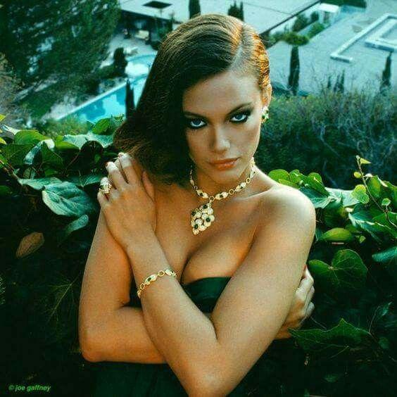Best 487 actresses images on pinterest celebrities for Maren jensen