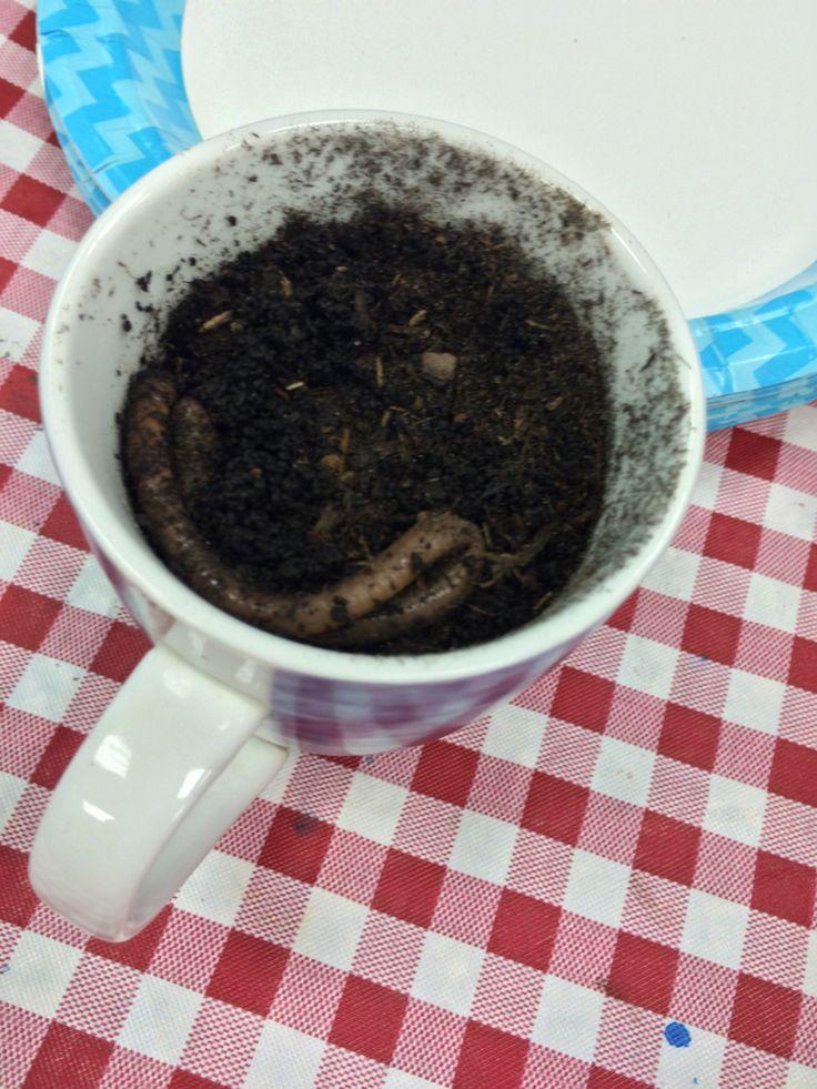 Worm coffee!!