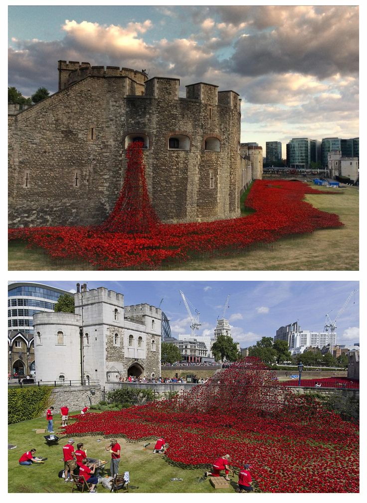 The Best Sea Of Poppies Ideas On Pinterest Sea World London - Tower of london river of poppies
