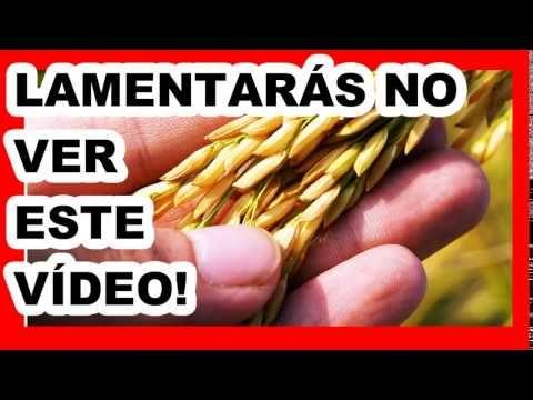 ¡ RITUAL PARA ATRAER DINERO ¡GUARDA ESTO EN UN FRASCO! ¡TU VIDA CAMBIARÁ POR COMPLETO! - YouTube