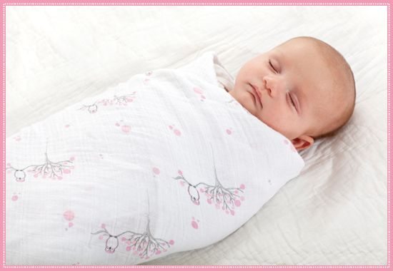 Soft organic cotton perfection: new aden + anais: Blanket