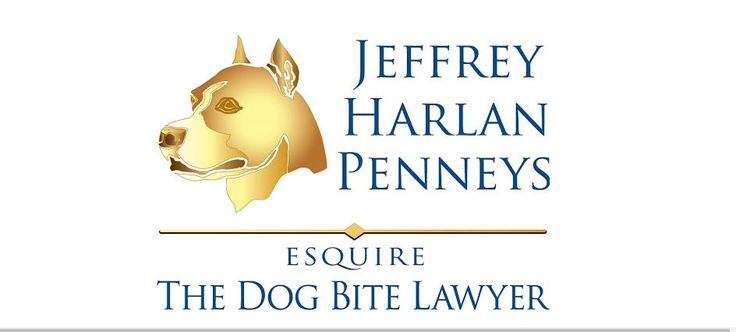Pennsylvania's Only Law Firm That Specializes In Dog Bite Cases http://www.agreatertown.com/philadelphia_pa/the_dog_bite_lawyer_0001359123