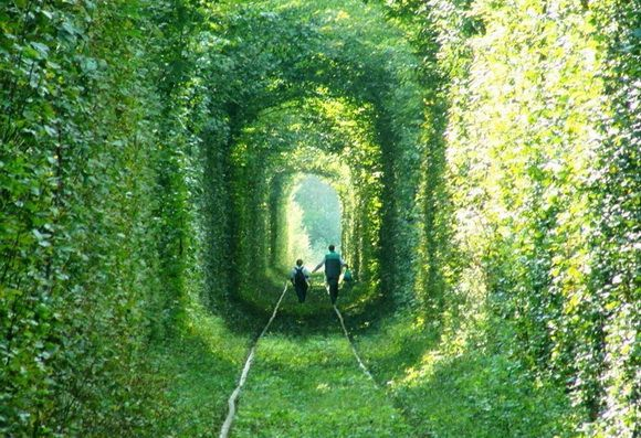 THE WORLD GEOGRAPHY: 8 of the Most Unique Paths in the World Ukraine Tunnel of Love
