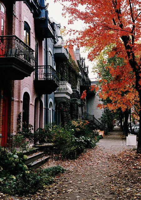 "Montreal in the fall--how it looks in the 1st book of the Lora Weaver mystery series, ""The First Faux Pas."""