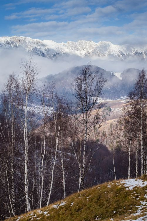 Cold Mountain Photo by Attila Szabó -- National Geographic Your Shot