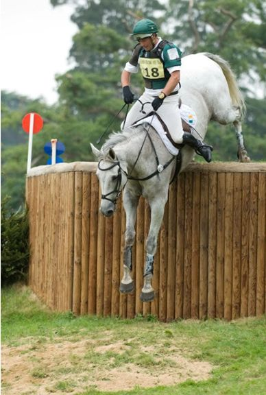 Horses jumping cross country - photo#48