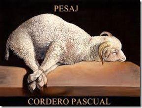 """El término español """"pascua"""" proviene del latín páscae, que a su vez proviene del griego πάσχα (pasja), una adaptación del hebreo פסח (pésaj), que significa """"paso"""". El verdadero origen de la Pascua se remonta al año 1513 antes de Cristo.cordero El pueblo judío salió de Egipto  ..."""
