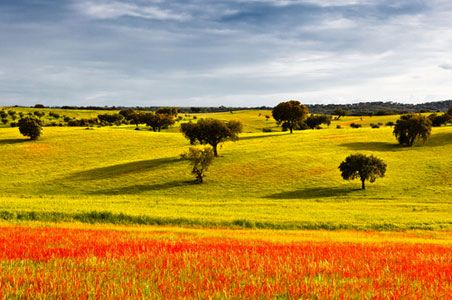 alentejo portugal - Google Search
