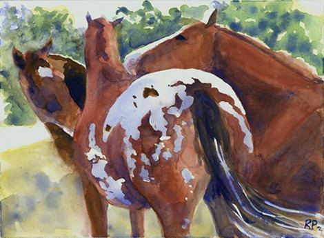 """Watercolor of appaloosa, titled """"Field Gossip"""""""