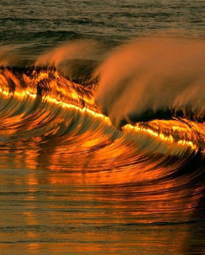 Golden waves ...
