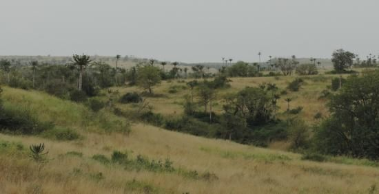 Vista desde Ludi, Provincia de Bengo