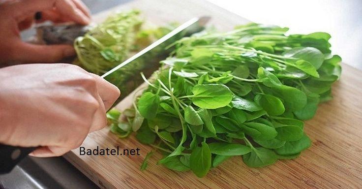 Najzdravšia zelenina na svete: Čistí cievy, lieči akné a ničí rakovinu