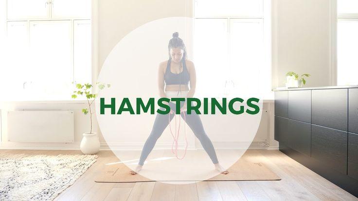 5 x Hamstrings