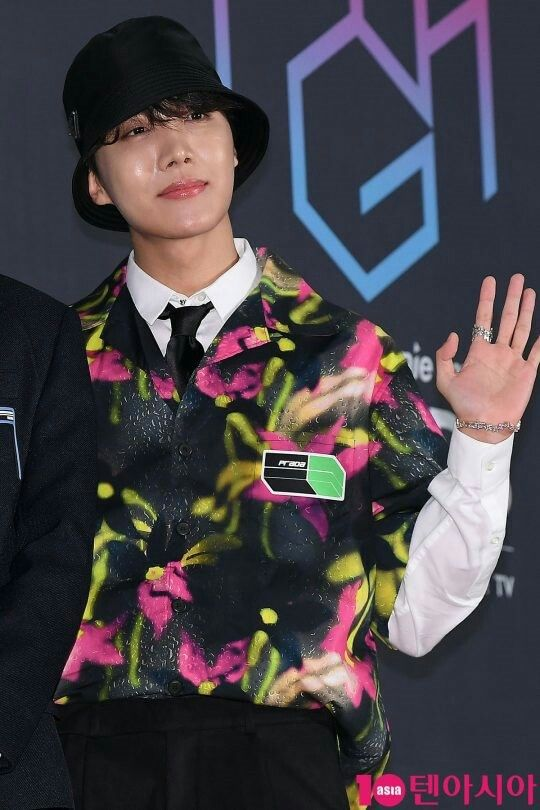 BTS AT MGA 2018 RED CARPET #jhope | BTS in 2019 | Album of the year