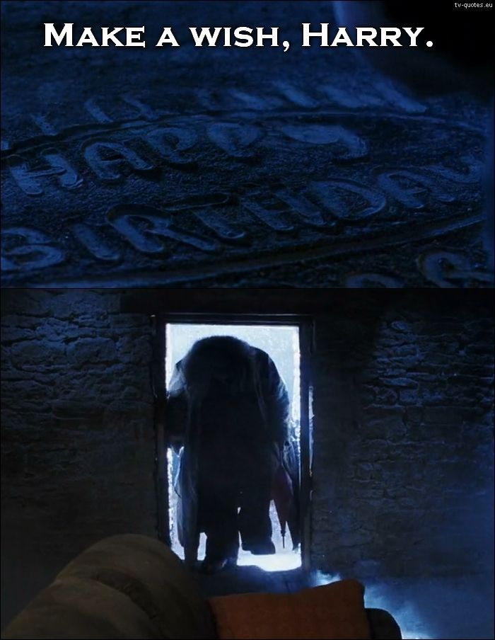 TV Quotes: Harry Potter - Quote - Make a wish, Harry...