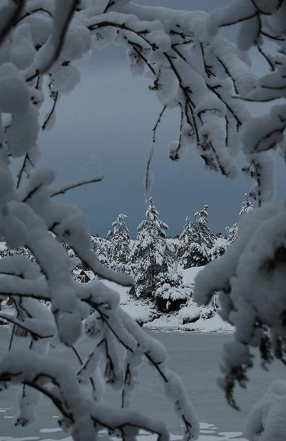Winter, Snow, Beauty