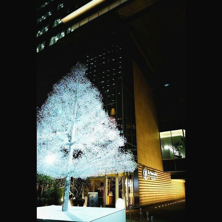 赤プリ跡地のビル初めて来ましたクリスタルで出来たツリーがきれい a Christmas tree #christmastree #illustration #tokyo #akasaka #cristaltree #クリスマスツリー #クリスタルツリー #赤プリ跡地 #東京ガーデンテラス紀尾井町 #っていうらしいよ