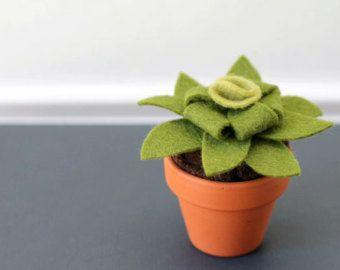 Ähnliche Artikel wie Kleine Filz Sukkulente. Künstliche Topfpflanze Skulptur. Gefälschte Pflanze. Muttertagsgeschenk. Urban Home Office oder Apartment Decor auf Etsy