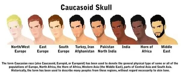 """The """"Caucasian race"""" term is in limited use today (outside of USA) due to its origins fromracial scienceandanthropometry. But if you agree to use this term, then you are probably aware that it was invented by German scientists (or """"scientists"""") to describe Germans themselves and all their European neighbors and enemiesin terms of scull shape, including Russians (and Georgians thus allegedly """"Caucasian race""""). So Europeans and Russians by definition are of Caucasian race.  849Views·"""