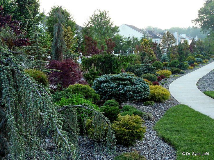 garden - berm