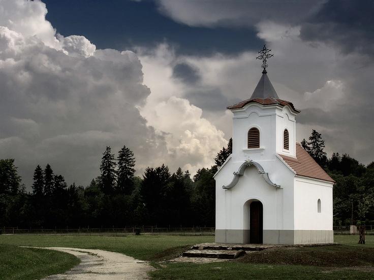 Orseg National Park | photo by Laszlo Krizsan.Varázslatos Magyarország