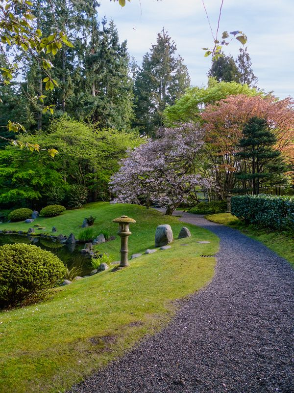Nitobe Memorial Garden - spring. Vancouver, BC #Vancouver #UBC #VancouverGardens #exploreBC #veryVancouver #gardens #JapaneseGarden #exploreBCgardens #gardentourism #Canada #日本庭園