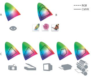 Illustration of The color gamuts of various devices and documents with these callouts: A. Lab color space (entire visible spectrum) B. Documents (working space) C. Devices