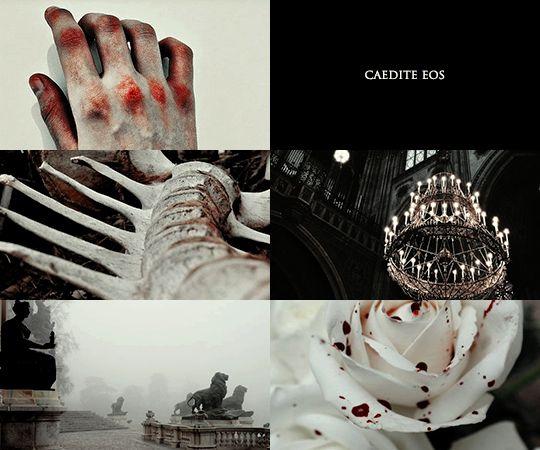Sacred Twenty-Eight   Lestrange 2/2
