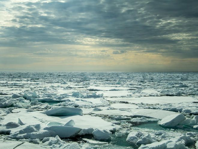 Most of the Arctic's federal waters are off limits to thanks to protections put in place in 2016. But the Trump administration wants to reverse the ban and allow fossil fuel companies to begin bidding for a chance to drill. That would be a mistake. Not only would new drilling threaten local...