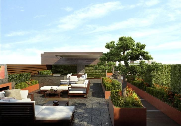 Roof terrace with raised beds and vertical garden // Chelsea Creek