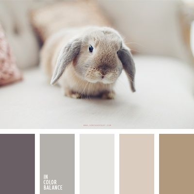 Es una combinación suave y cálida de colores café y gris.  Esos tonos agradables son muy adecuados para decorar una cafetería o un restaurante con diseño loft.  Del mismo modo son una buena opción para despachos y salones.     La foto de dicha paleta fue sacada por la fotógrafa Sonya Khegay.
