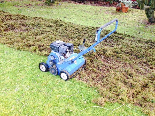 After winter your lawn will generally not be looking its best and you need to take some steps to rectify this. There are a number of spring lawn care tips andbest treatments for lawns that you should know about that will help you with this. These tips ensure that you know where to start and how to prepare your lawn for the summer months.  Dethatch The Lawn With A Rake  Lawn thatch is dying or dead grass shoots that have accumulated over the winter. Having a little bit of this is actually…