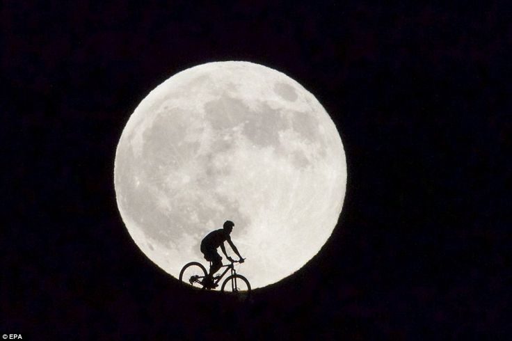 A cyclist - in what appears to be a scene straight out of Hollywood blockbuster E.T: The Extra Terrestrial - is seen passing before the supermoon in Fuerteventura in Spain's Canary Islands. The supermoon marks the point at which the Moon comes near its closest orbit