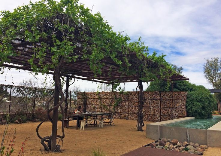 West Texas Trip Itinerary: Where to eat and what to see in Marfa. This is the restaurant / courtyard of the Thunderbird Hotel.