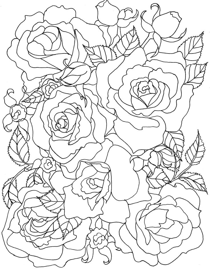roses flowers coloring pages davlin publishing - Rose Coloring Pages